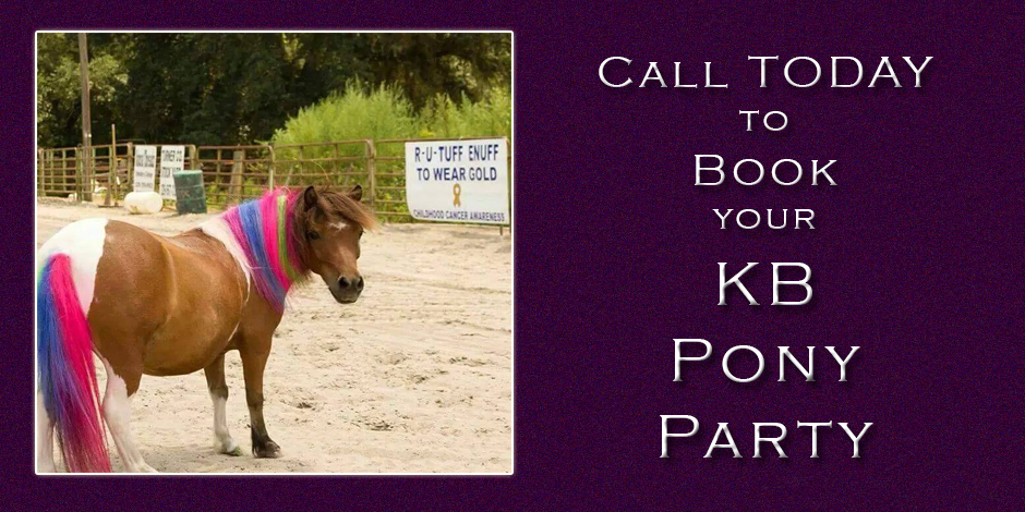 Pony Parties with KB Horse Camp
